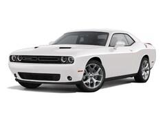 2015 Dodge Challenger SXT Plus or R/T Plus Sporty Car