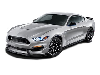 2017 Ford Shelby GT350 w / NAV Coupe