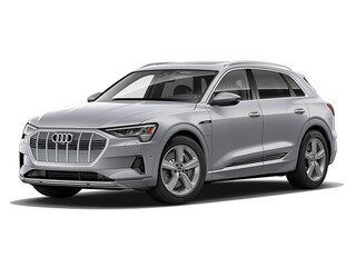 New 2019 Audi e-tron Premium Plus SUV for sale in Massapequa, NY