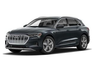 New 2019 Audi e-tron Premium Plus SUV WA1LAAGEXKB025023 near Smithtown, NY