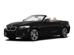 2019 BMW 230i 230i Convertible WBA2M7C5XK7D13564