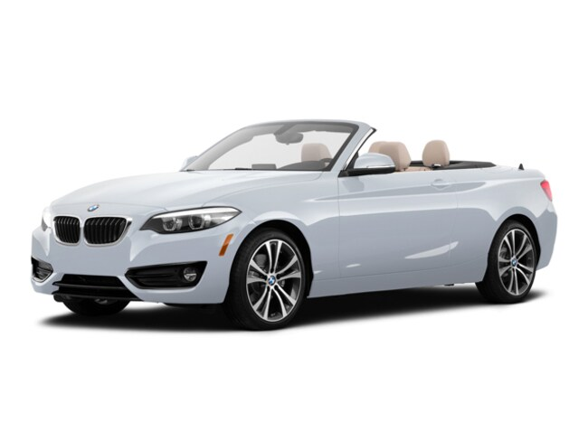 2019 BMW 230i Convertible in Harriman, NY