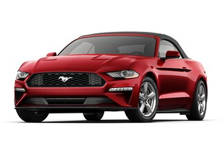 New Ford vehicles 2019 Ford Mustang Ecoboost Premium Convertible for sale near you in Braintree, MA