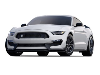 new 2019 Ford Shelby GT350 Coupe for sale near Boise