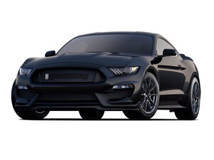 2019 Ford Shelby GT350 Shelby GT350