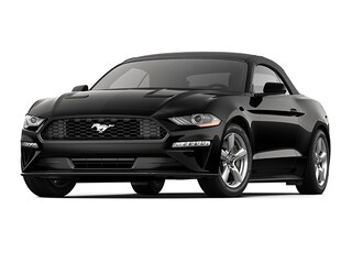New 2020 Ford Mustang Ecoboost Convertible for sale near you in Braintree, MA