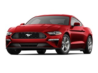 New 2020 Ford Mustang Ecoboost Car for sale near you in Braintree, MA