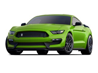 2020 Ford Shelby GT350 SHELBY-GT350R Coupe