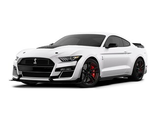 2020 Ford Shelby GT500 Shelby GT500 Fastback Coupe Corpus Christi, TX