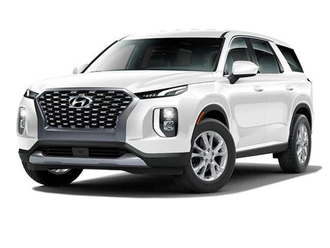 New 2020 Hyundai Palisade SE SUV KM8R1DHE8LU038273 for sale in Oneonta, NY