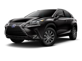 New 2020 LEXUS NX 300h SUV in Beverly Hills, CA