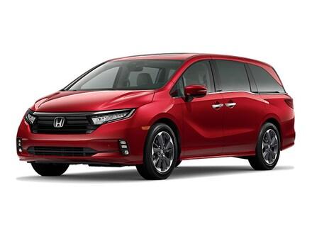 Featured New 2022 Honda Odyssey Elite Van for sale near you in Lufkin, TX