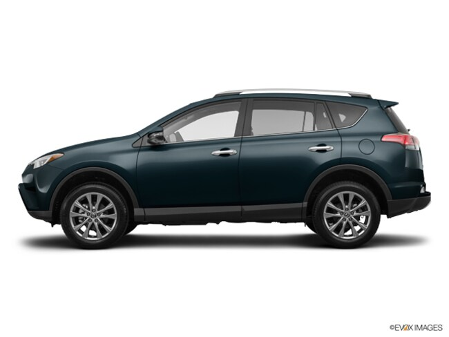 New 2018 Toyota RAV4 Limited SUV in Silver Spring, MD