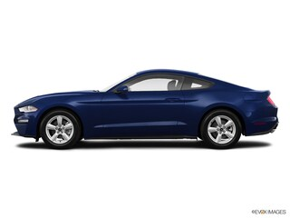 2019 Ford Mustang Coupe 1FA6P8TH9K5167880