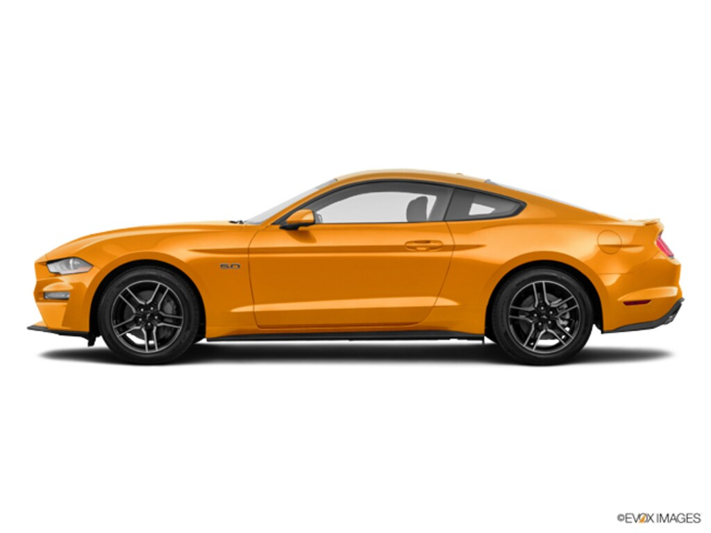 New 2019 fordmustang gt