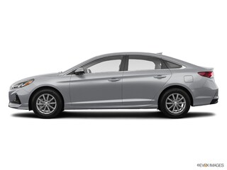 New 2019 Hyundai Sonata SE Sedan KH763595 in Winter Park, FL