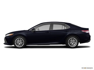 New 2019 Toyota Camry XLE Sedan T5570 in Plover, WI