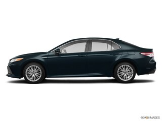 New 2019 Toyota Camry Hybrid XLE Sedan T6115 in Plover, WI