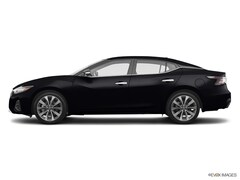 New 2019 Nissan Maxima 3.5 Platinum Sedan 1N4AA6AV0KC374677 in Valley Stream, NY