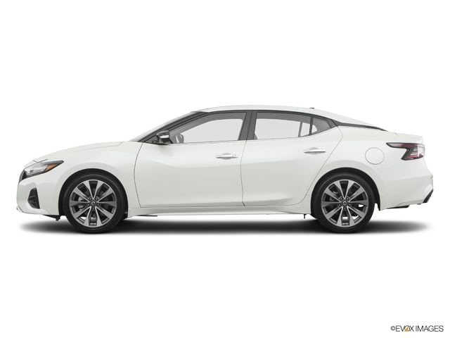 New 2019 Nissan Maxima 3.5 Platinum Sedan in Durham, NC