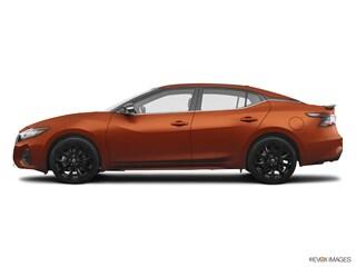 new 2019 Nissan Maxima 3.5 SR Sedan 1N4AA6AV9KC366013 for sale in Lakewood CO