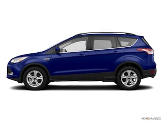 Used  Ford Escape Wd Dr Se Sport Utility In Jackson Oh