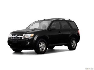 2009 Ford Escape XLT Sport Utility