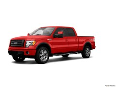 2009 Ford F-150 Truck for sale in Harrisonville
