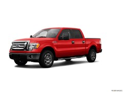 2009 Ford F-150 XLT Truck
