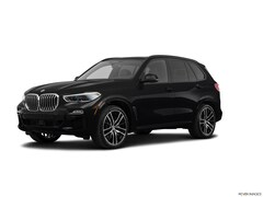 Used 2019 BMW X5 xDrive50i xDrive50i Sports Activity Vehicle For Sale in Wilmington, DE