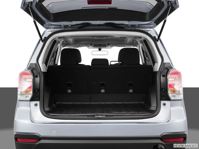 Rogue Cargo Space, Forester ...