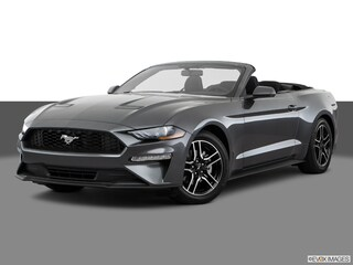 New 2020 Ford Mustang Ecoboost Premium Convertible for Sale in Knoxville, TN