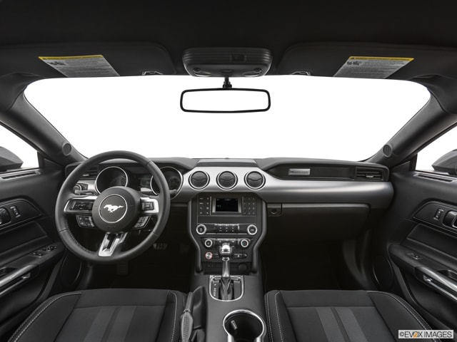 2019 Ford Mustang Coupe Digital Showroom | Mitchell Auto Group