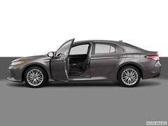New 2019 Toyota Camry Hybrid XLE Sedan in Laredo, TX