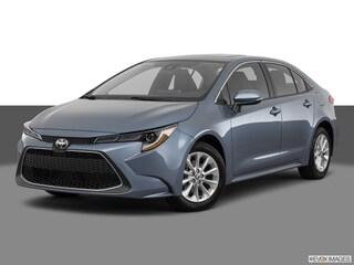New 2020 Toyota Corolla XLE Sedan for sale near you in Boston, MA
