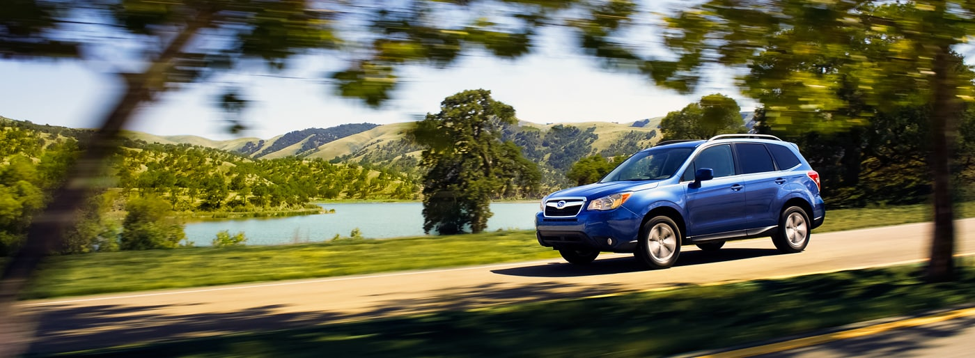 new 2015 subaru forester at patriot subaru of north. Black Bedroom Furniture Sets. Home Design Ideas