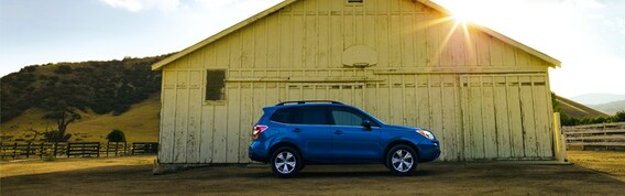 Lease A Subaru >> Subaru Forester Lease In Madison Wi