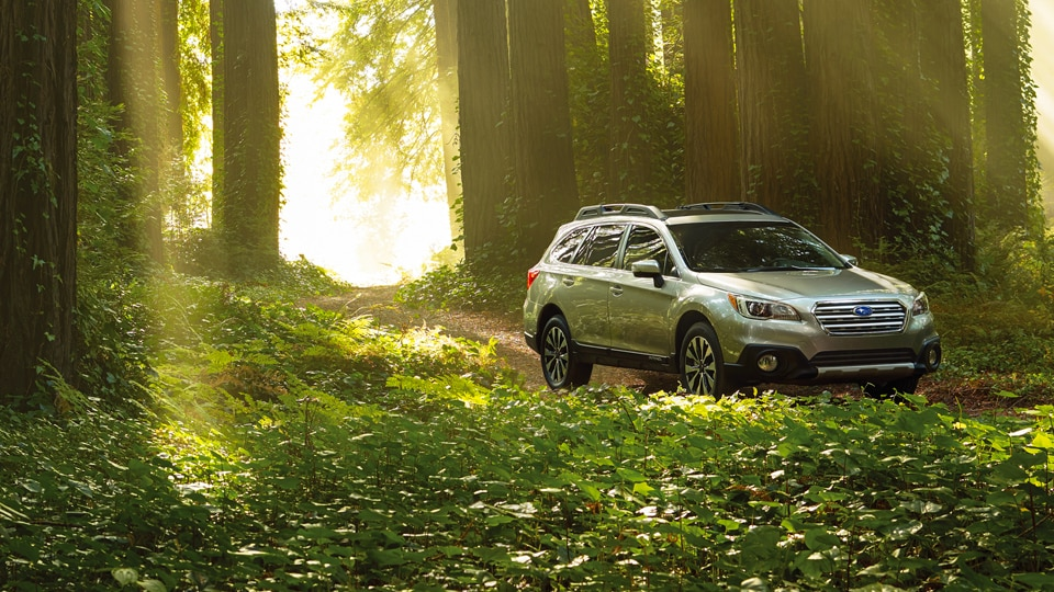 The Subaru Outback Versus The Volkswagen Golf Sportwagen And The Ford Edge