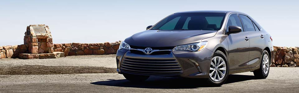 New 2019 Toyota Camry for Sale in Raynham, MA