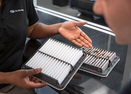 $10.00 off purchase of engine air and cabin air filter combo