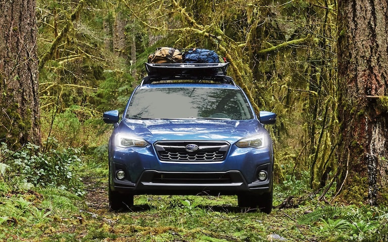 A 2020 Crosstrek with cargo on its raised roof rails on a rough forest road.