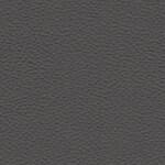 Gray StarTex Urethane (Onyx)